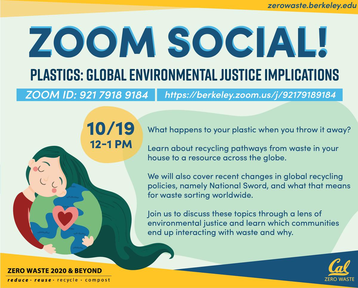 Global Environmental Justice Implications